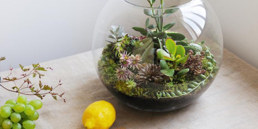 Jardins Miniatures coup de coeur pour les jardins miniatures ! | madame décore